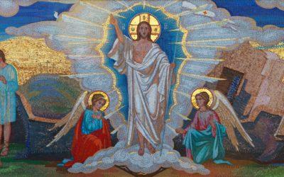 Impulsion avril 2021petites résurrections quotidiennes